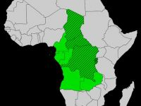 WHAT IS GOING ON CENTRAL AFRICAN REPUBLIC?